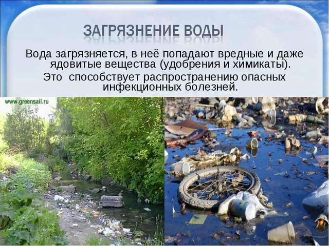 Вода загрязняется, в неё попадают вредные и даже ядовитые вещества (удобрения...