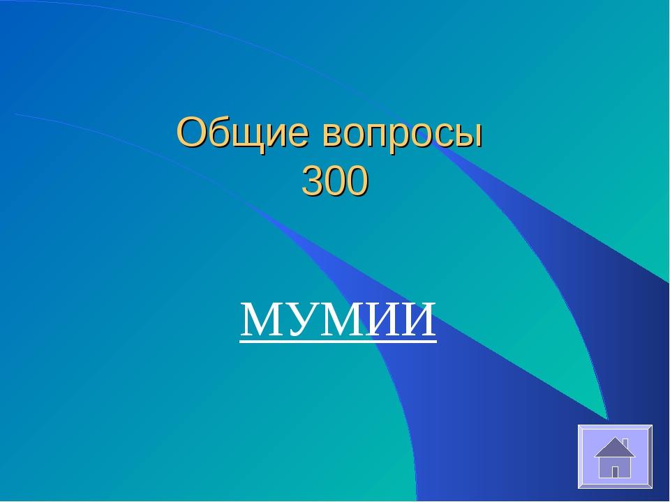 Общие вопросы 300 МУМИИ