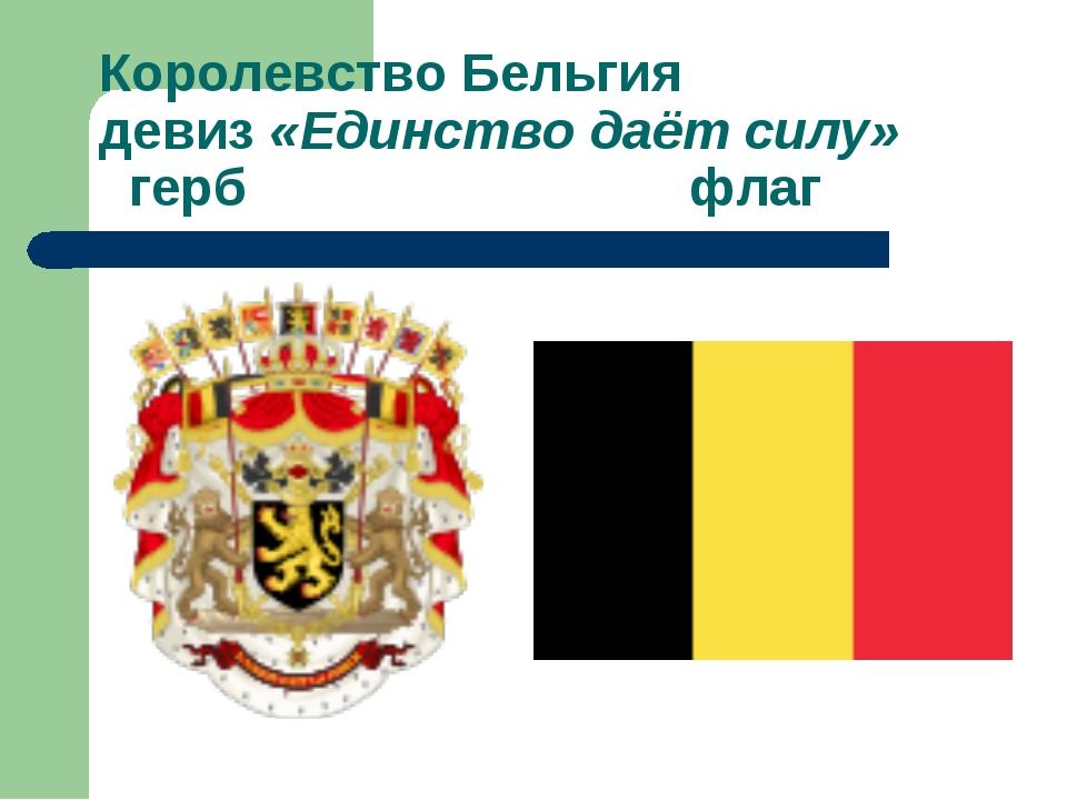 Королевство Бельгия девиз «Единство даёт силу» герб флаг
