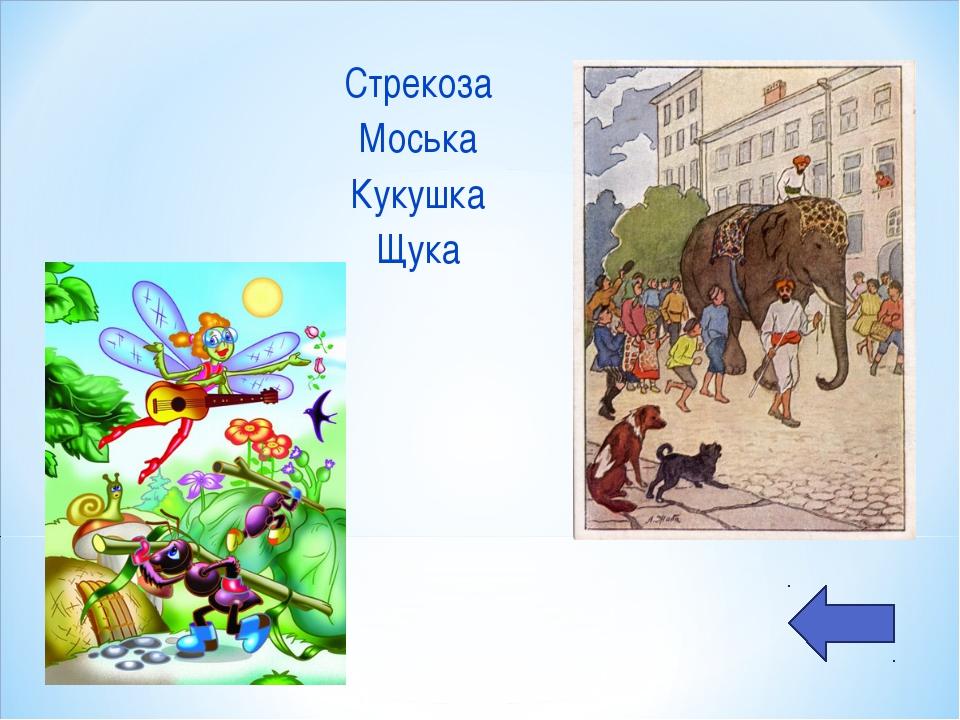 Стрекоза Моська Кукушка Щука