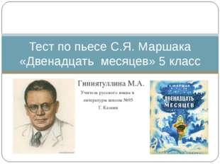 Гиниятуллина М.А. Учитель русского языка и литературы школы №95 Г. Казани Те