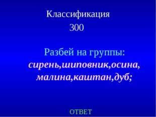 Классификация 300 ОТВЕТ Разбей на группы: сирень,шиповник,осина, малина,кашта