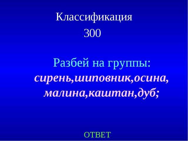 Классификация 300 ОТВЕТ Разбей на группы: сирень,шиповник,осина, малина,кашта...