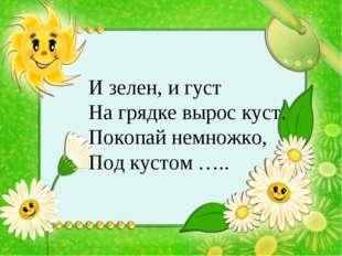 И зелен, и густ На грядке вырос куст. Покопай немножко, Под кустом …..