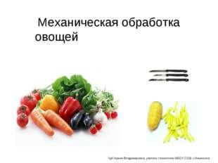 Механическая обработка овощей Чуб Ирина Владимировна, учитель технологии МБОУ