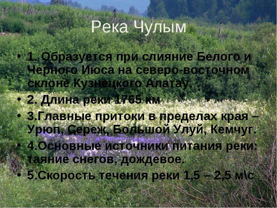 Река Чулым 1. Образуется при слияние Белого и Черного Июса на северо-восточно...
