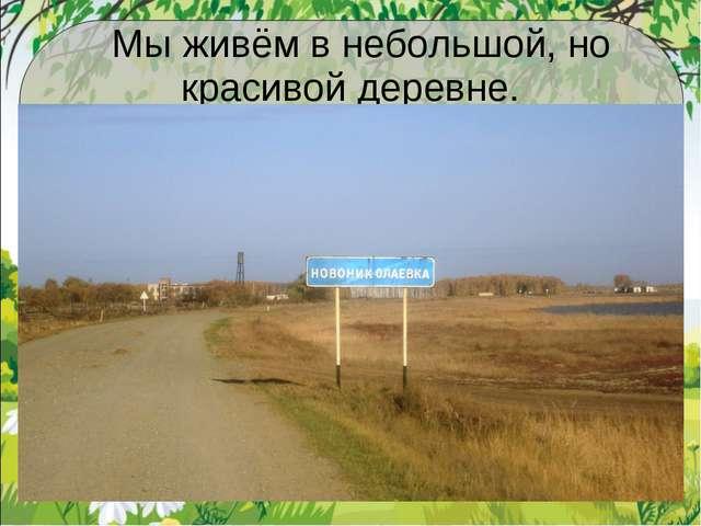 Мы живём в небольшой, но красивой деревне.