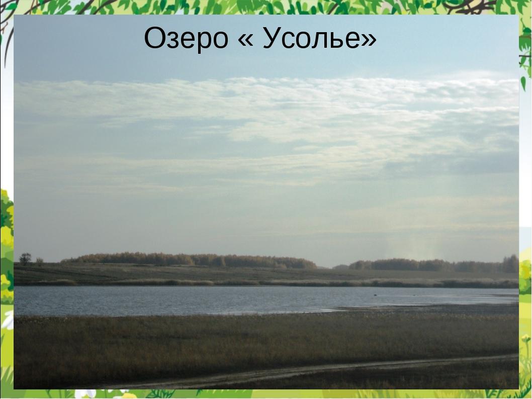 Озеро « Усолье»