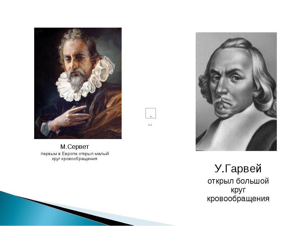 У.Гарвей открыл большой круг кровообращения М.Сервет первым в Европе открыл м...