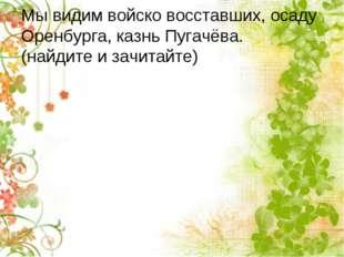 Мы видим войско восставших, осаду Оренбурга, казнь Пугачёва. (найдите и зачит