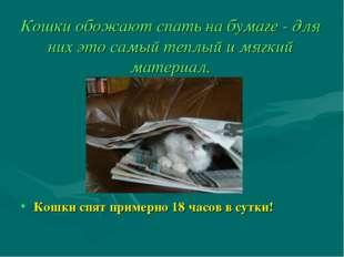 Кошки обожают спать на бумаге - для них это самый теплый и мягкий материал. К