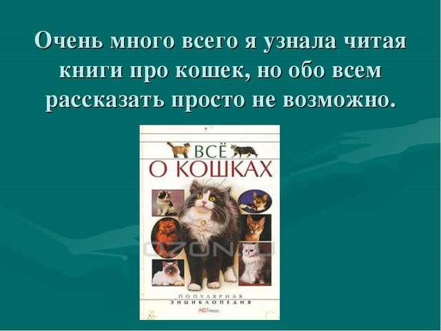 Очень много всего я узнала читая книги про кошек, но обо всем рассказать прос...