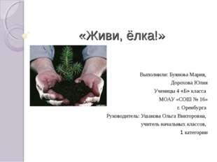 «Живи, ёлка!» Выполнили: Буянова Мария, Дорохова Юлия Ученицы 4 «Б» класса МО