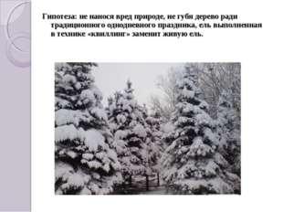 Гипотеза: не нанося вред природе, не губя дерево ради традиционного однодневн