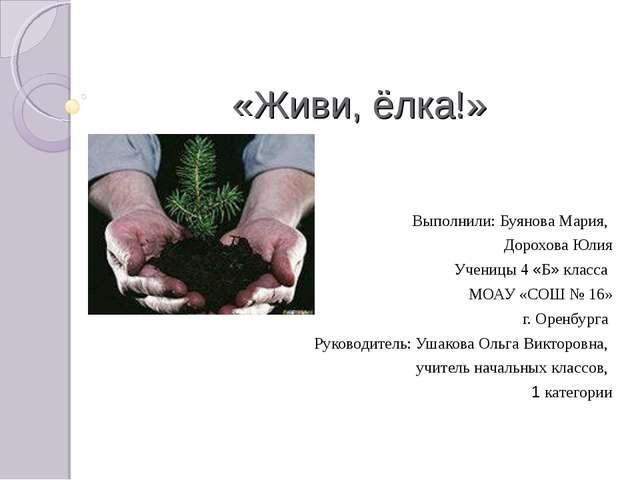 «Живи, ёлка!» Выполнили: Буянова Мария, Дорохова Юлия Ученицы 4 «Б» класса МО...