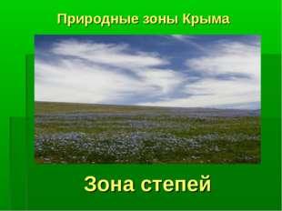 Зона степей Природные зоны Крыма