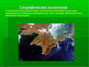 Географическое положение Степная зона расположена южнее лесостепной и прости