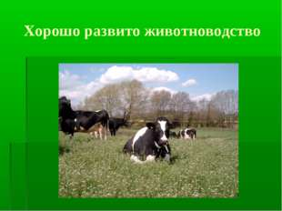 Хорошо развито животноводство