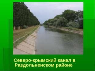 Северо-крымский канал в Раздольненском районе
