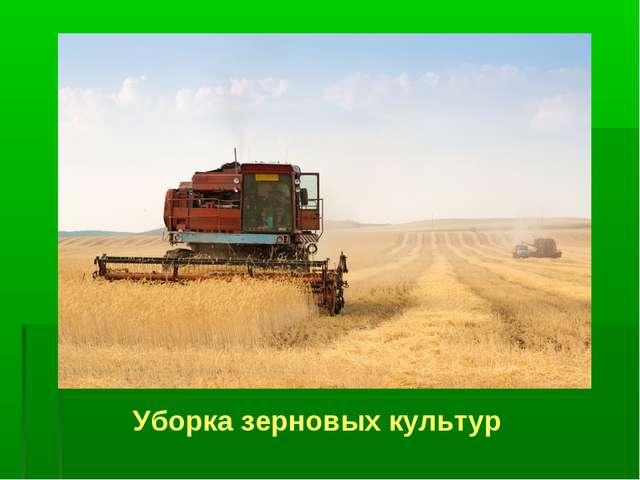 Уборка зерновых культур