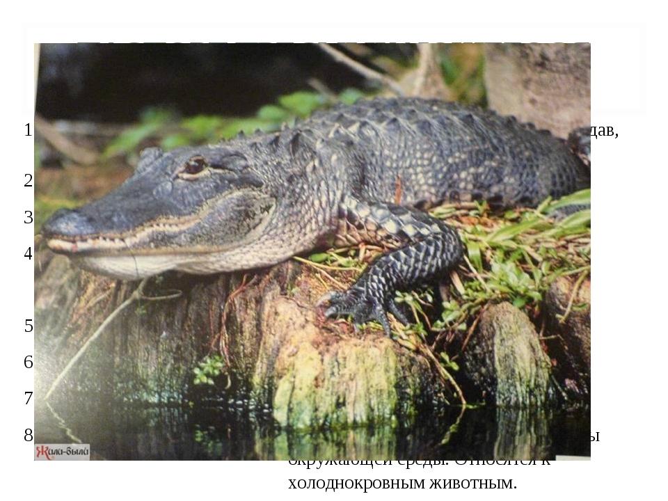 ПАСПОРТ ПРЕСМЫКАЮЩЕГОСЯ (РЕПТИЛИИ). 1.Представители группы.Крокодил, черепа...