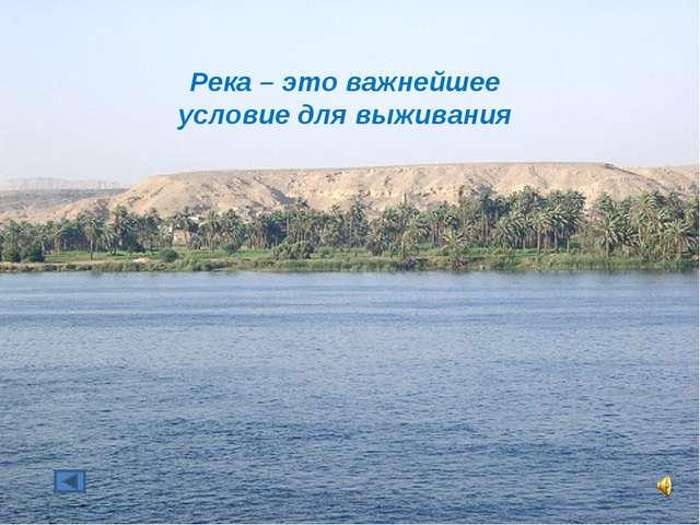 Река – это важнейшее условие для выживания