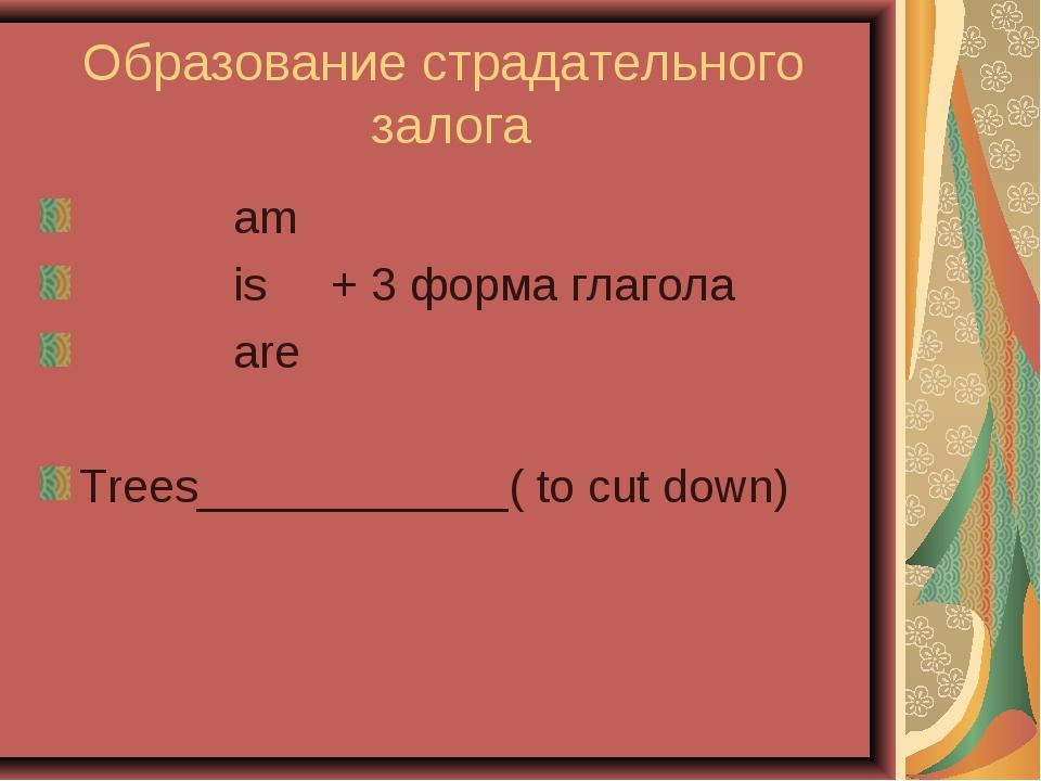 Образование страдательного залога am is + 3 форма глагола are Trees__________...