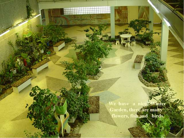 We have a nice Winter Garden, there are many flowers, fish and birds. *