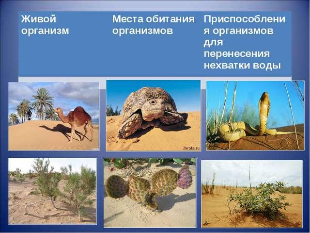 Живой организмМеста обитания организмов Приспособления организмов для перен...