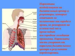 Наркотики воздействуют на дыхательный центр и рецепторы, которые отвечают за