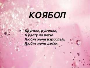 КОЯБОЛ