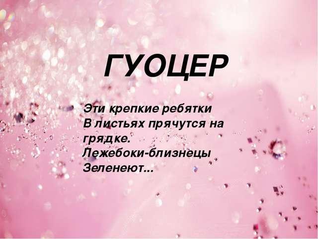 ГУОЦЕР