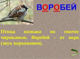 Птица названа по своему чириканью. Воробей – от ворк (звук воркования).