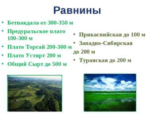 Равнины Бетпакдала от 300-350 м Предуральское плато 100-300 м Плато Торгай 20