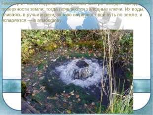 Некоторая часть подземных вод снова быстро находит выход к поверхности земли;