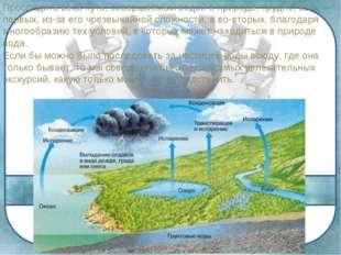 Проследить весь путь, совершаемый водой в природе, трудно, во-первых, из-за е