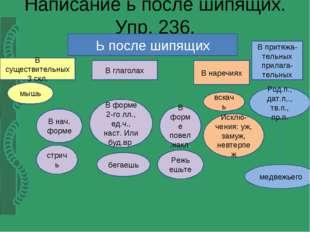 Написание ь после шипящих. Упр. 236. Ь после шипящих В существительных 3 скл.
