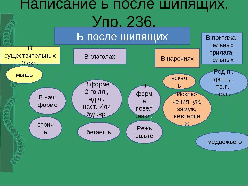 Написание ь после шипящих. Упр. 236. Ь после шипящих В существительных 3 скл....
