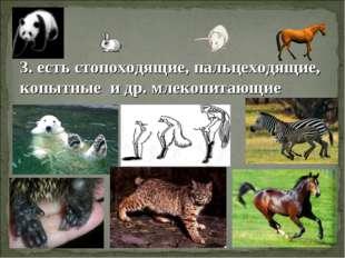 3. есть стопоходящие, пальцеходящие, копытные и др. млекопитающие