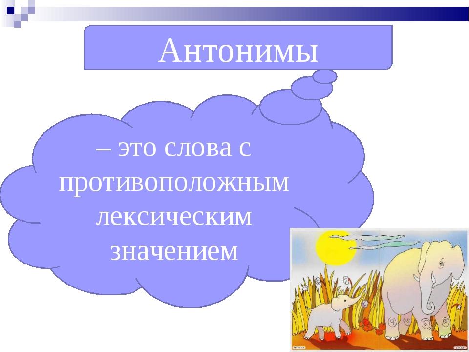 Антонимы – это слова с противоположным лексическим значением
