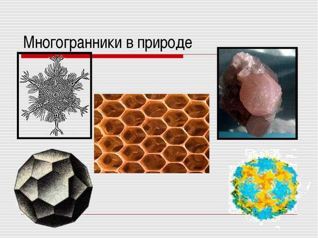Многогранники в природе