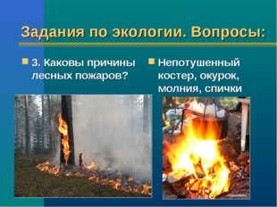Задания по экологии. Вопросы: 3. Каковы причины лесных пожаров? Непотушенный
