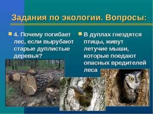 Задания по экологии. Вопросы: 4. Почему погибает лес, если вырубают старые ду
