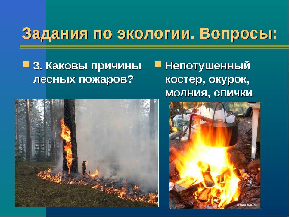 Задания по экологии. Вопросы: 3. Каковы причины лесных пожаров? Непотушенный...