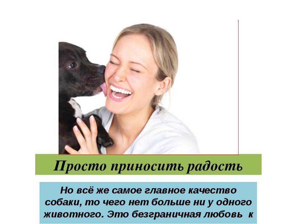 Просто приносить радость Но всё же самое главное качество собаки, то чего нет...