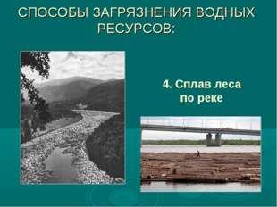 СПОСОБЫ ЗАГРЯЗНЕНИЯ ВОДНЫХ РЕСУРСОВ: 4. Сплав леса по реке