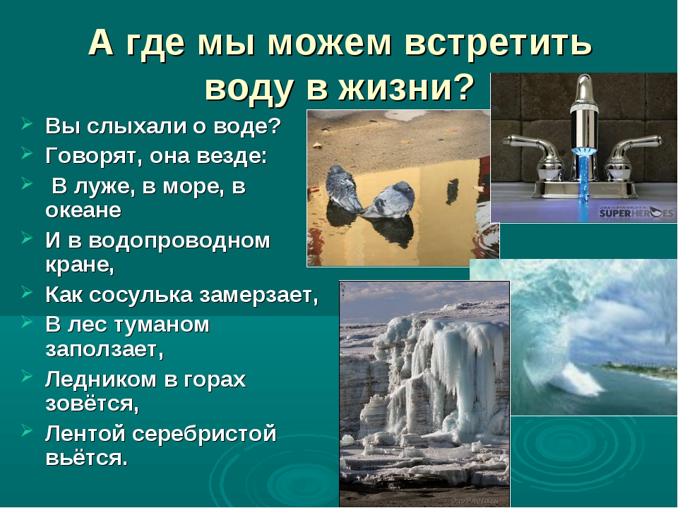 А где мы можем встретить воду в жизни? Вы слыхали о воде? Говорят, она везде:...