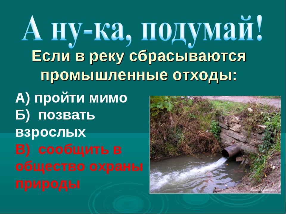 А) пройти мимо Б) позвать взрослых В) сообщить в общество охраны природы Если...