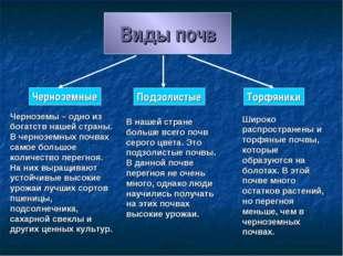 Виды почв Черноземные Подзолистые Торфяники Черноземы – одно из богатств наше
