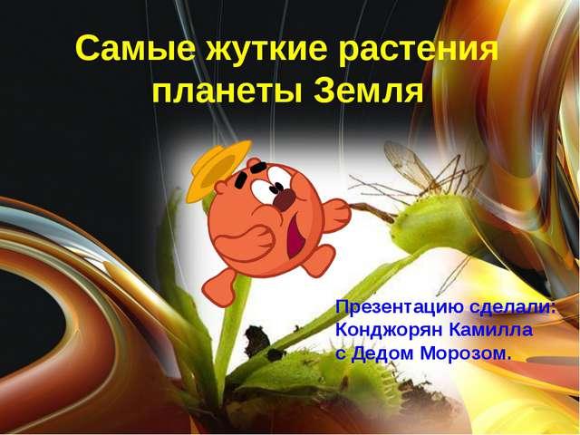 Самые жуткие растения планеты Земля Презентацию сделали: Конджорян Камилла с...